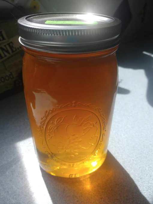 honey joyoforganics 1