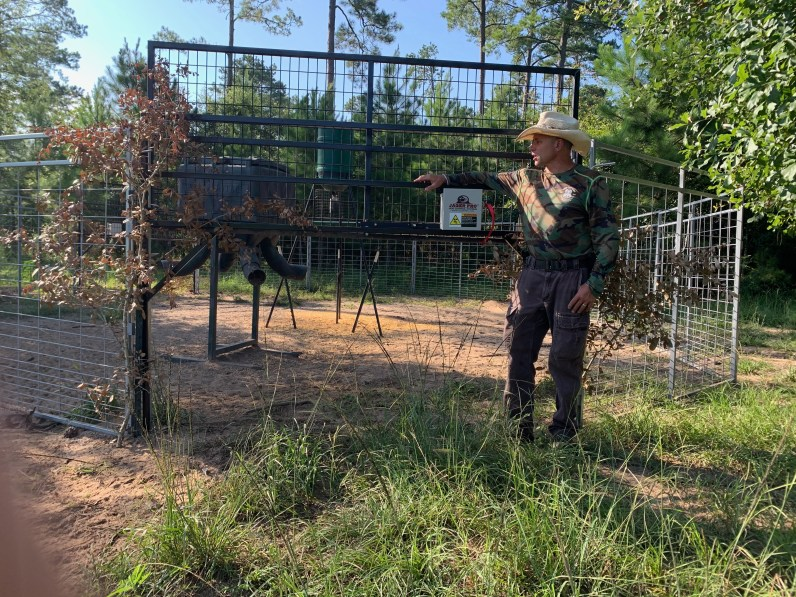 Josey at Hog Cutters Trapping Company
