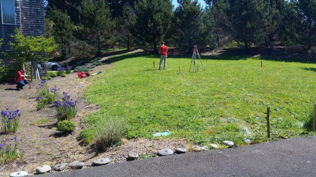 Caring Cabin - Empty Lawn