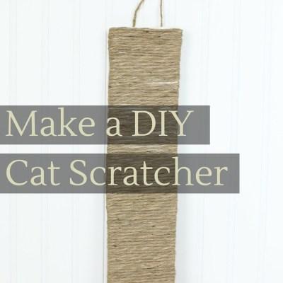 Make a DIY Cat Scratcher & New Cat Care Kit