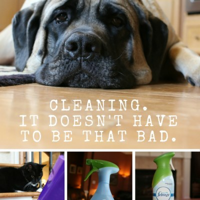 Tips to Make Fall Cleaning Faster and Easier
