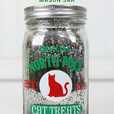 Create a Vinyl Decorated Cat Treat Mason Jar