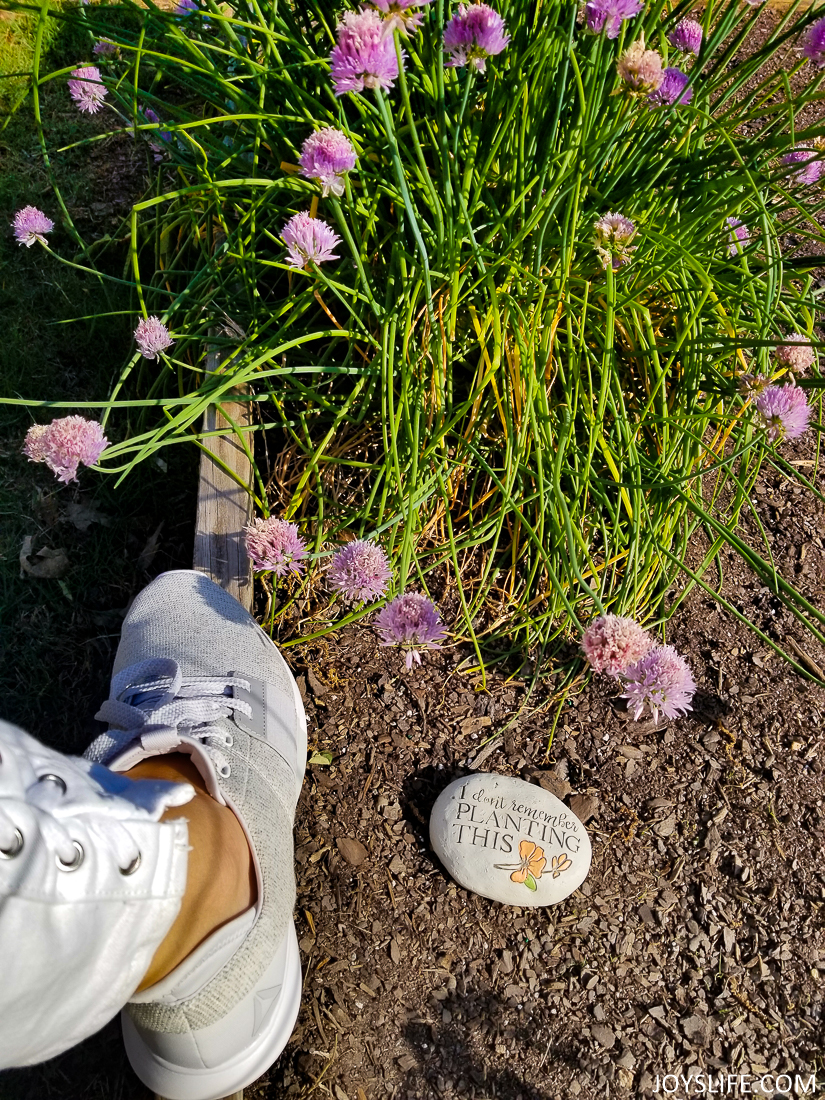 Reebok Trilux Onion Blossom in Garden