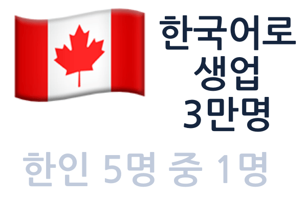뉴스카드, 한국어 구사자