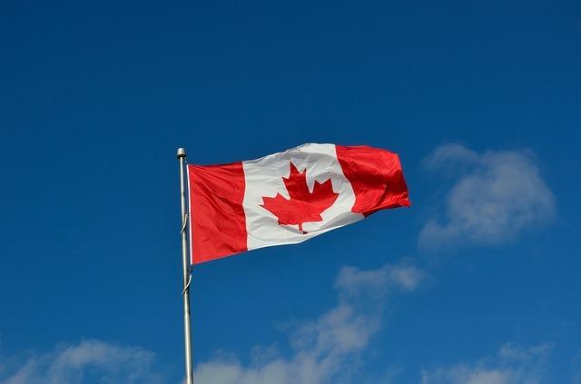 캐나다 국기, 메이플리프