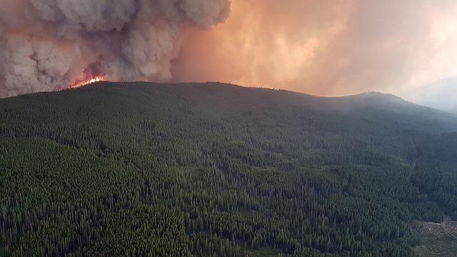 산불, BC주정부