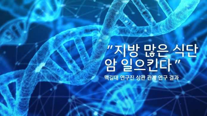 """""""지방 많이 먹으면 암세포 발현"""" 맥길대 연구팀"""