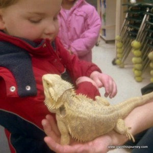 bearded dragon and boy