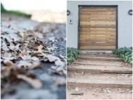 Oak Leaves and wooden door