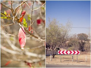Red leaf and hazard sign