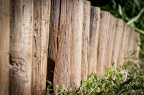 Wooden hedge