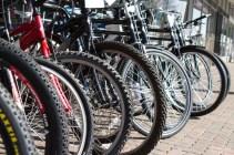 Linden Bicycles
