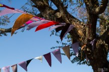 Bunting in Trees