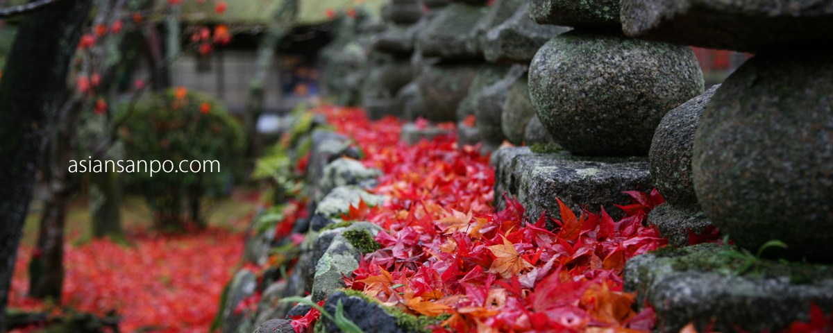 京都 化野念仏寺 紅葉