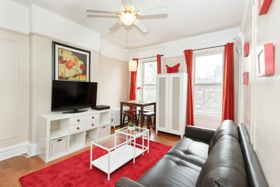 NY apartment photographer one bedroom apartment crown heights brooklyn ny living