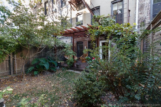 Professional photography of garden apartment in Crown Heights, Brooklyn