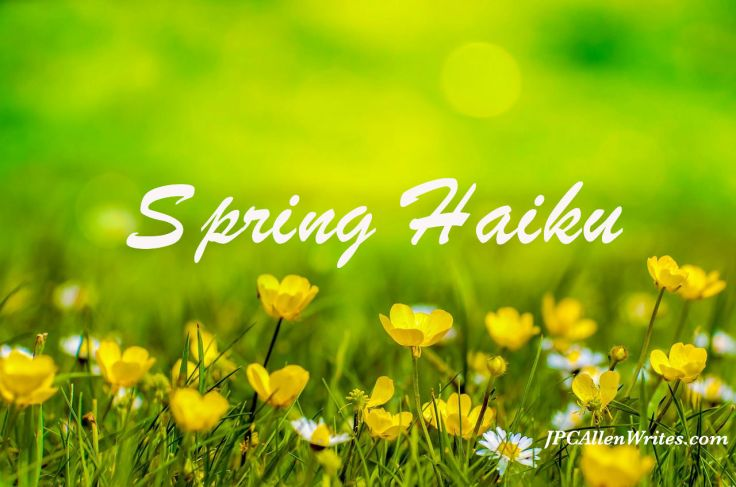 springw-316535_1280