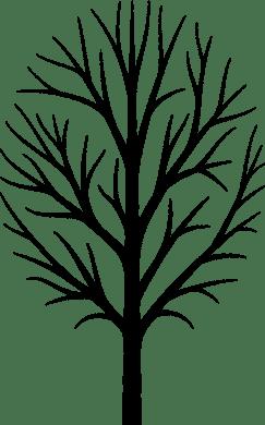 tree-2069726_1280