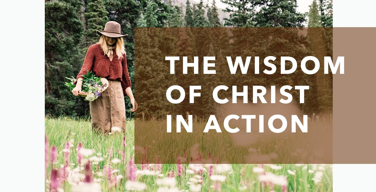 The Wisdom of Christ in Action