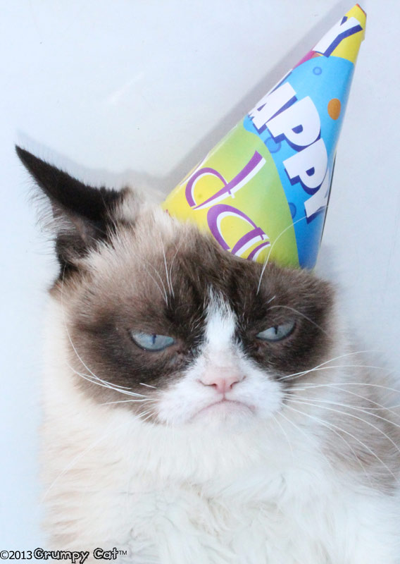 Naughty Happy Birthday Meme Cat