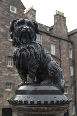 Nearby is a statue of the Greyfriars Bobby. Legend has it, this terrier watched over his master's grave for 14 years. Loyal Scottish Lad!