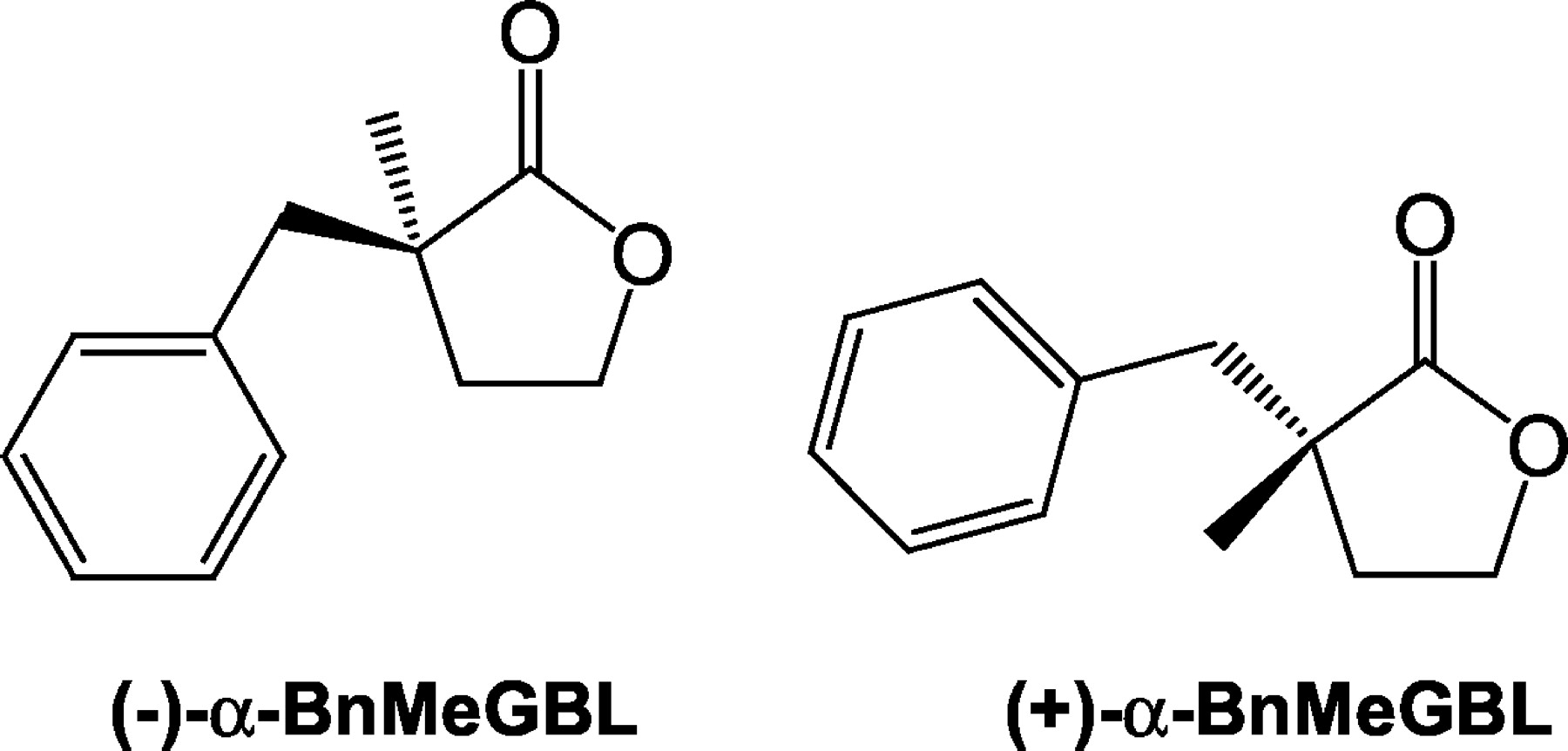Enantioselectivity Of Benzyl Methyl Butyrolactone Mediated Modulation Of Anticonvulsant