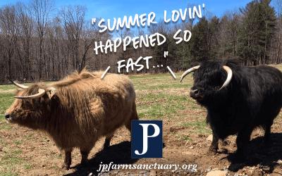 Summer lovin' happened so fast…