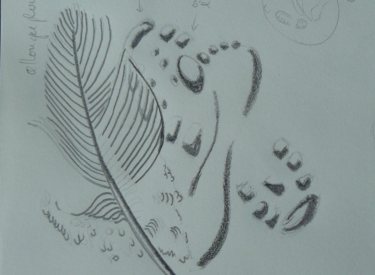 dessin préparatoire linogravure empreintes