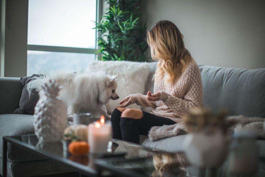 Flicka med hund sittandes i soffa i lägenhet