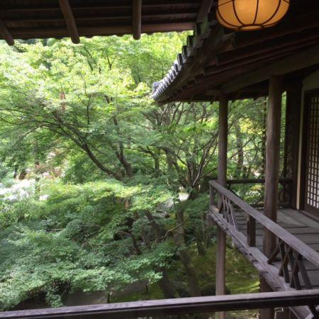 京都 しょうざんリゾート 赤ちゃん連れでも楽しめる?