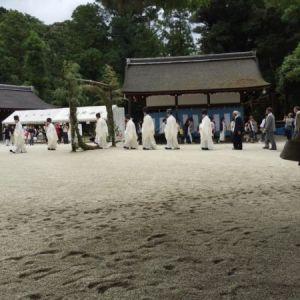 夏越の祓 茅の輪くぐり.JPG