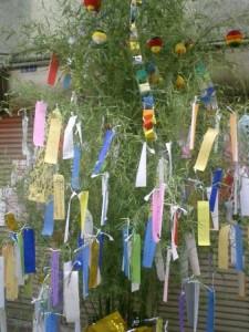Tanabata (1)