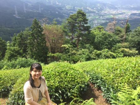 京都の絶景スポット!抹茶のふるさと和束町とは?