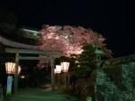 臼杵公園・臼杵城跡