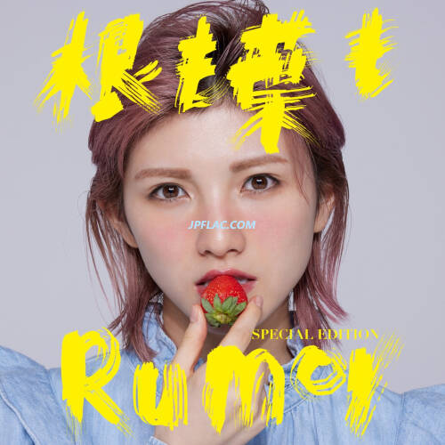 Download AKB48 - 根も葉もRumor Special Edition rar