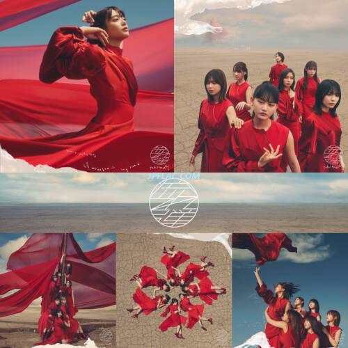 Download 櫻坂46 - 流れ弾 (Special Edition) rar