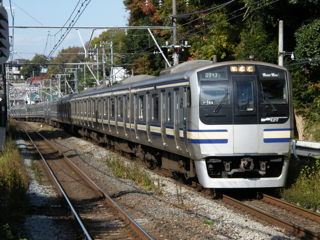 Ivory and blue are Yokosuka-Sobu train's color.