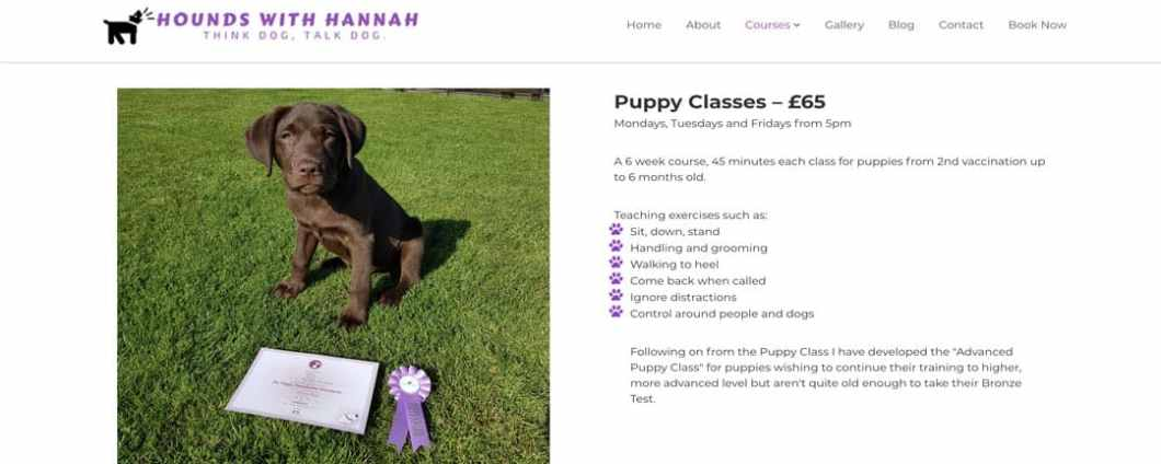 Puppy Classes At Hounds With Hannah