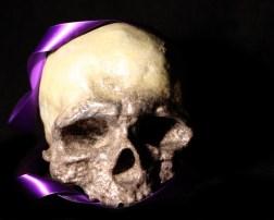 Skull With Ribbon