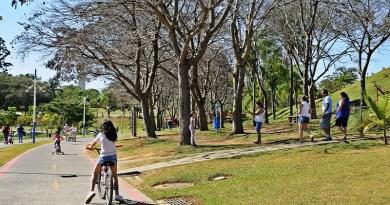 Parque da Cidade volta ao normal e reabre aos domingos