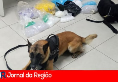 Cães da Guarda localizam drogas na Vila Tupi