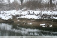 Cut off banks, River Erlauf, Winter 2009