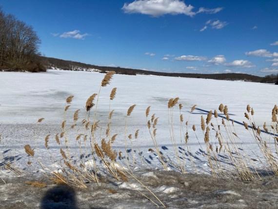 Frozen Lake Welch