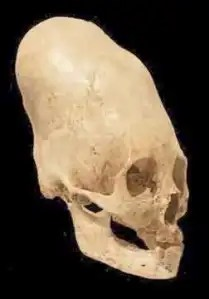 skull_peru