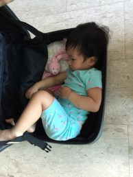 Packed Little E into luggage