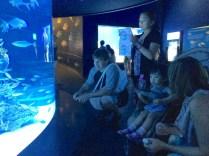 SJL and Little E in the SEA Aquarium.