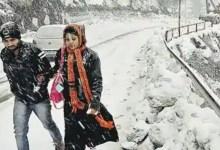 पश्चिमी डिस्टरबेंस से मौसम बदला: हिमाचल और कश्मीर में बर्फ गिरी, गुड़गांव में बिजली गिरने से पेड़ के नीचे खड़े 4 लोग झुलसे;  एमपी में भी बारिश