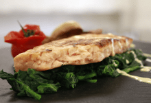 Loryma develops vegan fish change: 'Helpful wheat can authentically replicate the muscle meat of fish'