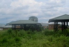 News24.com | Market stalls in Limpopo built by municipality left to rot for years
