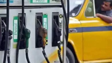 Petrol, Diesel Prices Today : पेट्रोल-डीजल के लिए आज इतने खर्च करने होंगे पैसे, चेक कर लें रेट